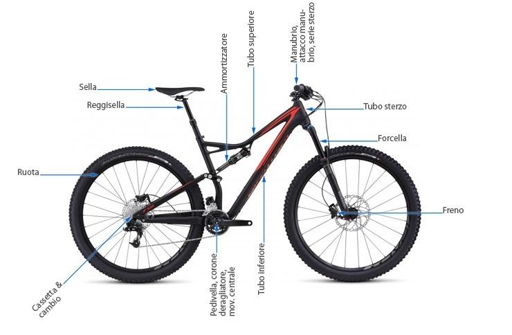 componenti della bicicletta